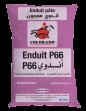 ENDUIT PATE P66